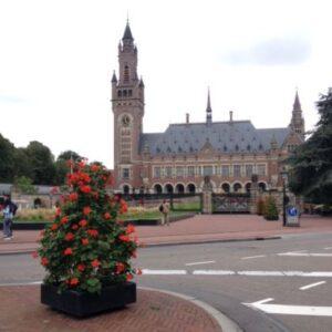 Hague